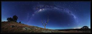 Milky Waybow