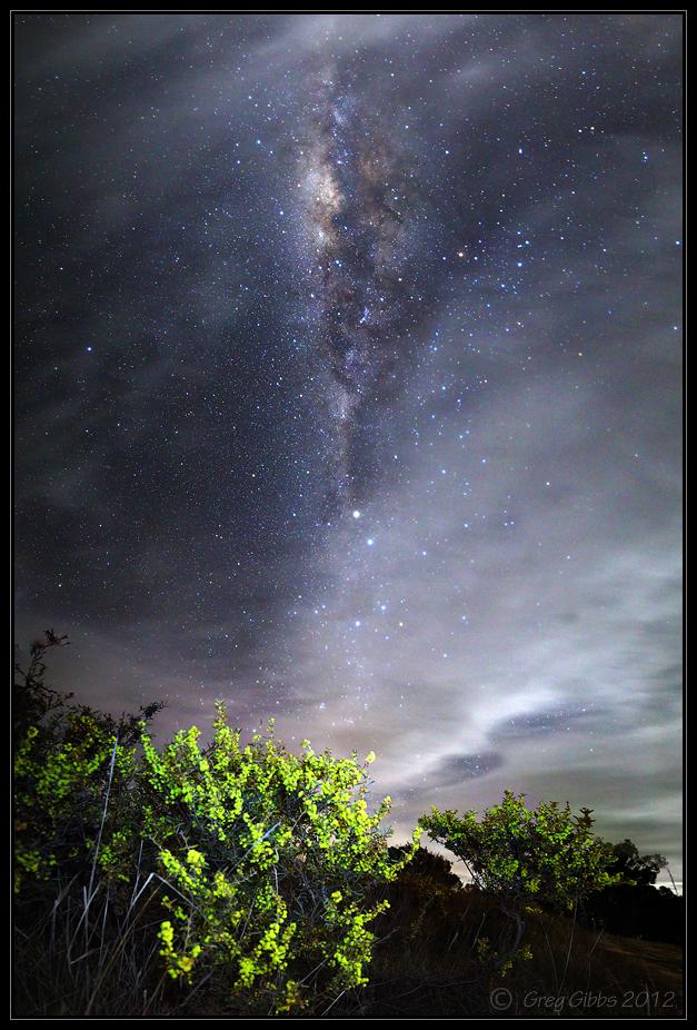 Cosmic Bouquet by CapturingTheNight