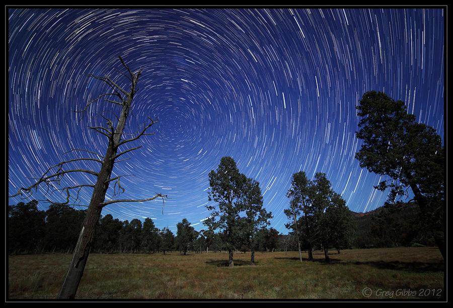 Moonlit Trails by CapturingTheNight