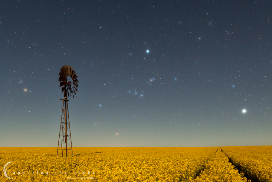 Field Of Dreams by CapturingTheNight