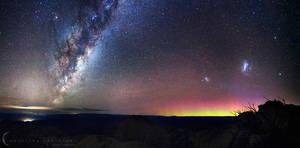 Natures Night Lights