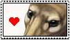 Thylacine Stamp by SaintJoanofTheRoses