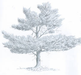 Tree by Yuglie