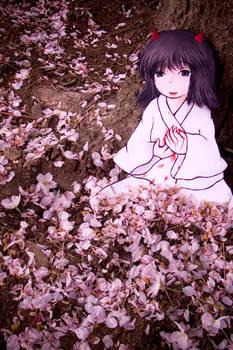 Paper Child Sakura scattered
