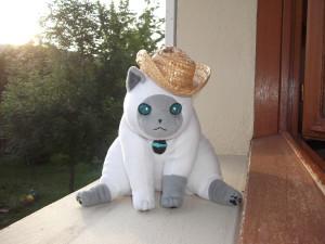 Naikkoh's Profile Picture