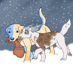 Gift - Blueberry Snow