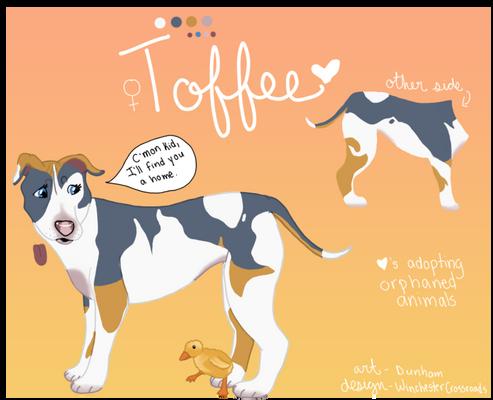 Gift - Sweet like Toffee
