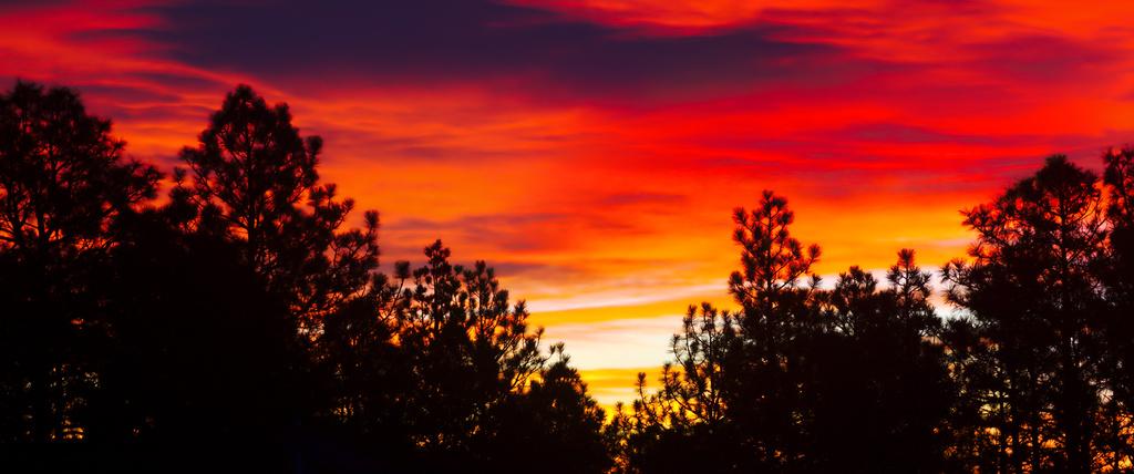Sky Fire by BradyLane