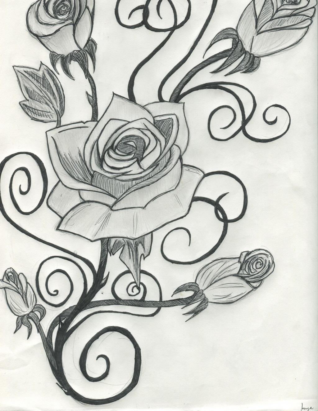 Rose Vines Drawings Drawings of Roses And Vines