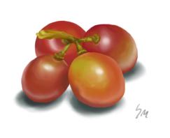 grapes by billygoatsgruff