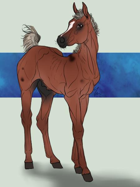 Foal: WR Ish'kafel by billygoatsgruff