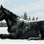 Snowdrift by billygoatsgruff