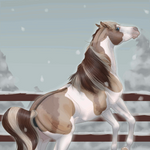 Winter Chill by billygoatsgruff