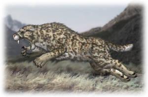 Scimitar Cat  Homotherium serum