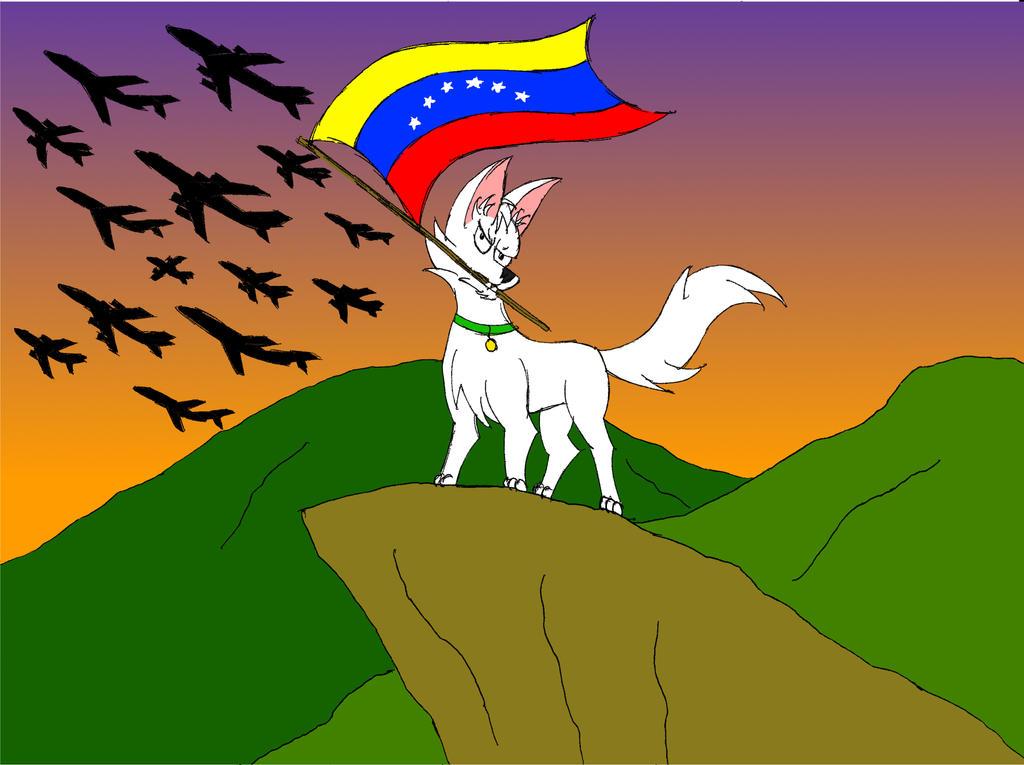 alzo mi bandera, sin importar a donde balla by Simonreinoso