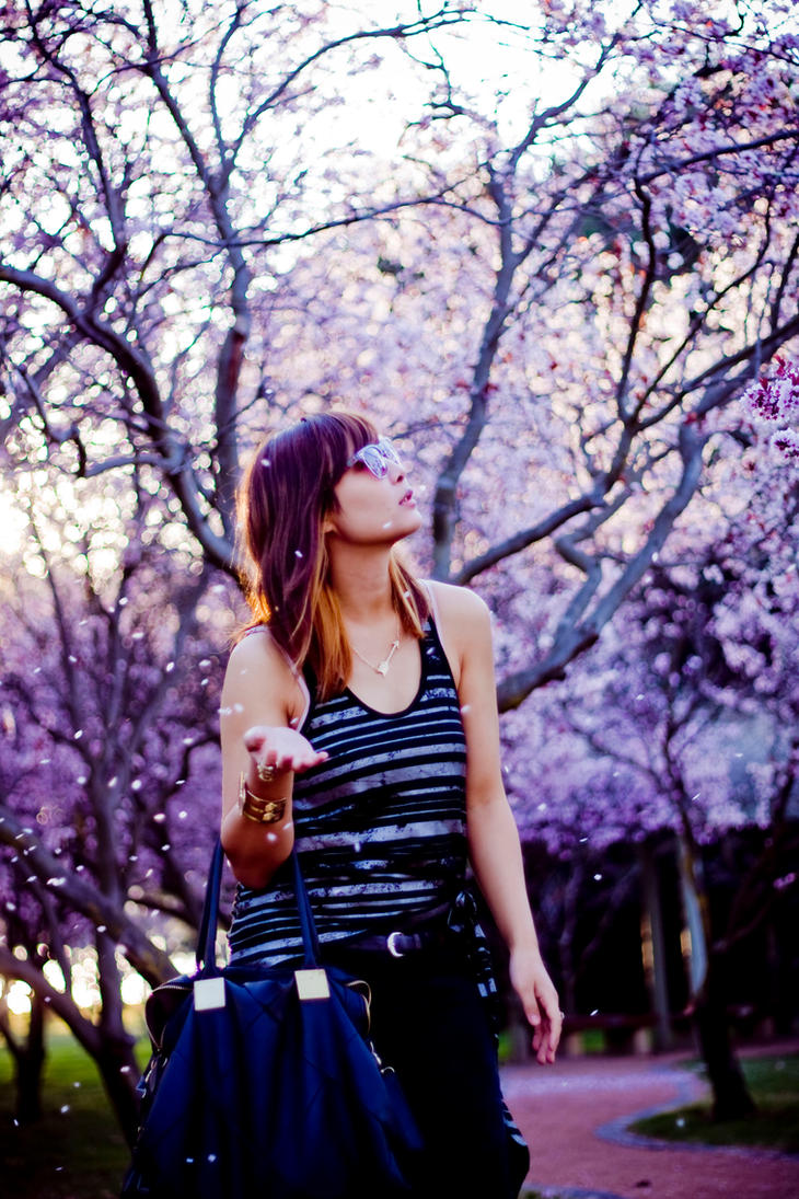 Sakura Mao Michi by sa55y
