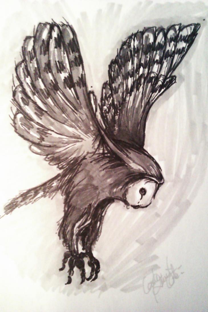 Owl by Laliewoodsha