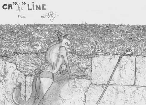 CaNIline 4
