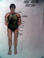 Vulcan Anatomy...backwards