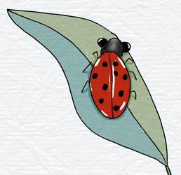 2021-02-23 - Ladybug