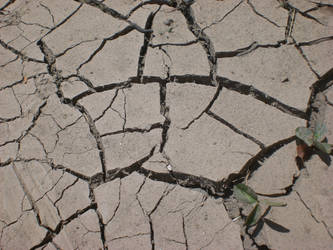 Cracked Earth... by balacicek