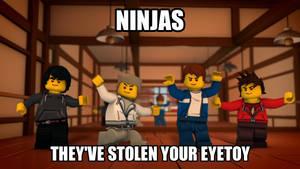 Ninjas have Stolen my Eyetoy!