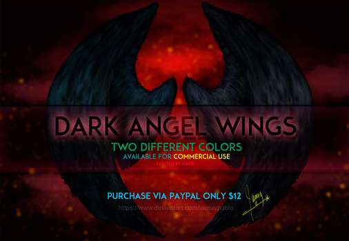 Dark angel wings lauraypablo