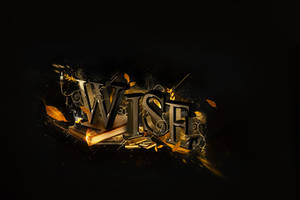 Wise by StrangeProgram