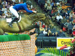 Horse Jumping Wall by SarWestMayStock
