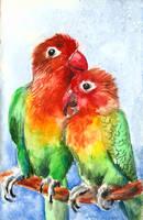 Parrots in love by FuzzyMaro