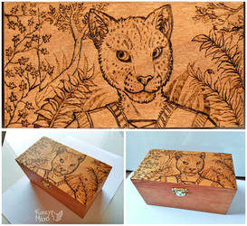 Wooden box- Khajit by FuzzyMaro