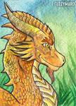 Dragon-ATC (ACEO)
