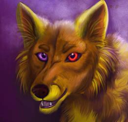 Wolf Maro