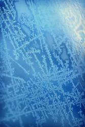 Blue Winter by SylviaDalberg