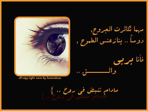 tanb'6 fe alro7 by 3ameeduae