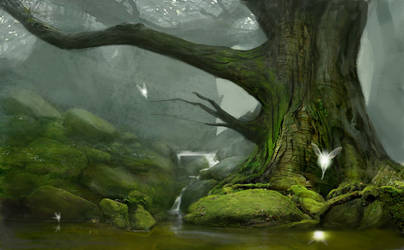 Forest concept