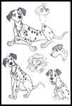 Pongo sketches