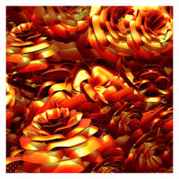 Magma Roses by Py3rr
