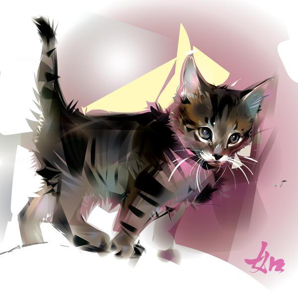 Kitten by LimKis