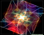 Psychedelic Science 5