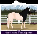 WSA Code Name Shakespeare