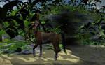 Centaur Archer 01b - The Redux by AdamTLS