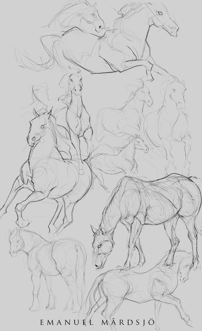 Horse studies by EmanuelMardsjo