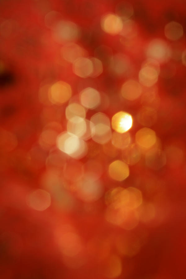 autumn bokeh by miss-deathwish-stock