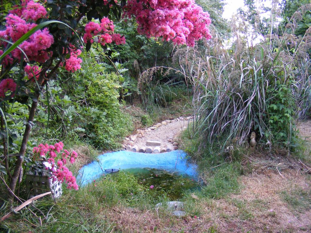Upgraded pond by Toradellin-Reserve