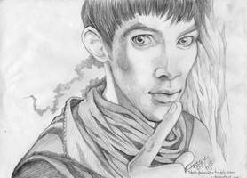 Merlin in pencil