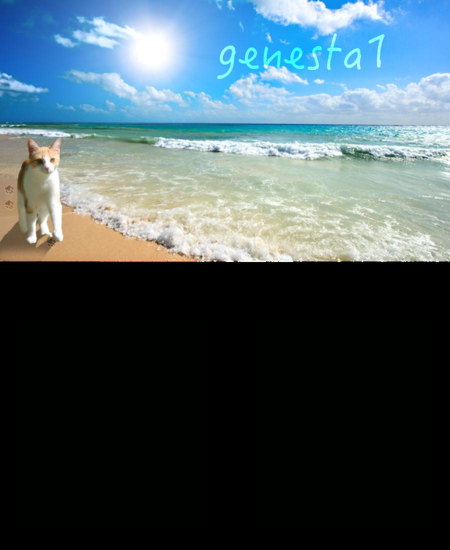 genesta1's layout