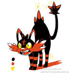 DD - Gen2 Color Litten