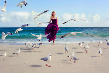 Feed the birds 2 by fae-photography