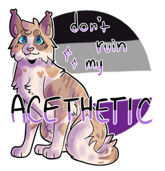 don't ruin my acethetic [2020]